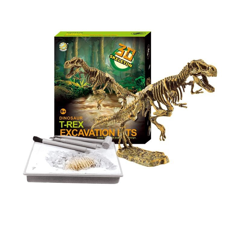 Dinosaur Skeleton Fossil Excavation Kit (T-Rex)