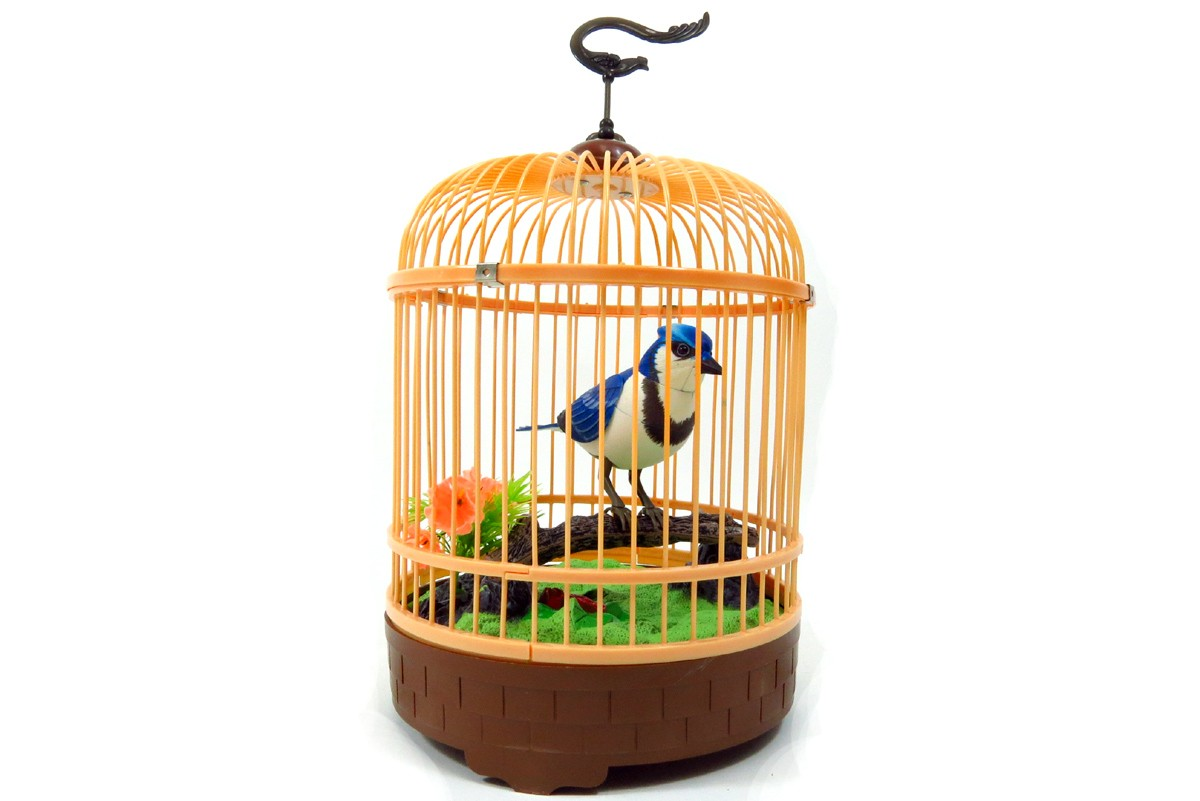 Singing & Chirping Bird in Cage - Realistic Sounds & Movements BC507D