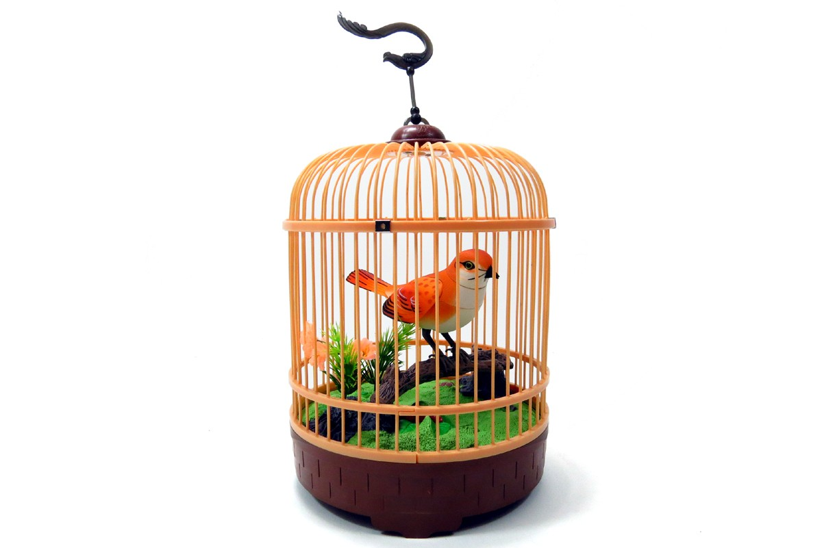 Singing & Chirping Bird in Cage - Realistic Sounds & Movements BC507G