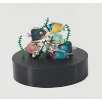 Magnetic Desktop Sculpture (Aquarium)